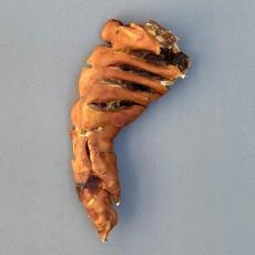돼지족발 대 1P 대형견 간식
